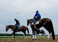 ELMONT, NY - JUNE 07: Blended Citizen waits before his gallop as horses prepare Thursday for the 150th running of the Belmont Stakes at Belmont Park on June 7, 2018 in Elmont, New York. (Photo by Scott Serio/Eclipse Sportswire/Getty Images)