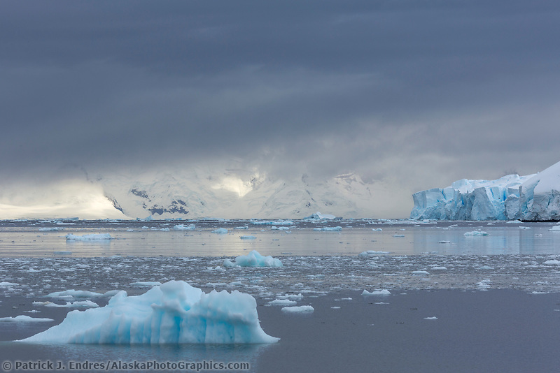 Landscape of floating icebergs, Antarctica.