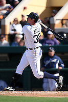 March 5, 2010:  Don Kelly of the Detroit Tigers hits a home run to right field during a Spring Training game at Joker Marchant Stadium in Lakeland, FL.  Photo By Mike Janes/Four Seam Images