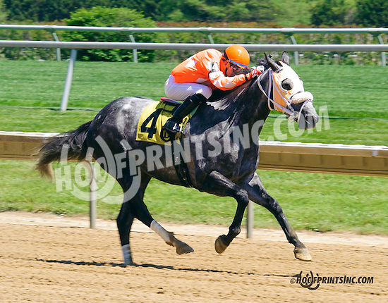 Ebony Two Star winning at Delaware Park on 5/23/15