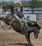 Bareback rider Devan Reilly from Sheridan, Wyoming scores 85 points at the 68th annual Oakdale Saddle Club Rodeo on Sunday, April 14, 2019.  (Al Golub/Record Photo)