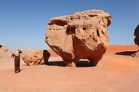 "Rock formation called ""the chicken"", Wadi Rum Protected Area (WRPA), Wadi Rum National Park, also known as The Valley of the Moon, 74,000-hectare, UNESCO World Heritage Site, desert landscape, southern Jordan, Middle East. Picture by Manuel Cohen"