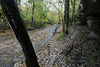 NWA Democrat-Gazette/FLIP PUTTHOFF <br /> Hiking the Tanyard Creek Nature Trail reveals      Oct. 29 2019      nature's beauty along Sunshine Creek, or Avalon Creek, as it's also known. The clear stream joins Tanyard Creek downstream from the Tanyard Creek waterfall.