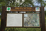 Israel, Lower Galilee, the single track bike trail in Bet Keshet forest