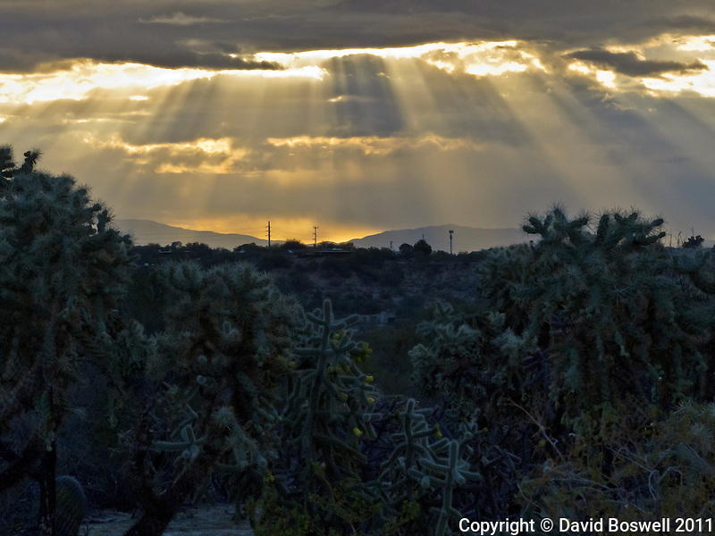Rays of light shine through the clouds just after sunrise north of Tucson, Arizona.