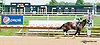 Mexikoma winning at Delaware Park on 9/12/13