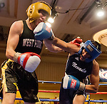 2015 Nevada Boxing