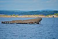 Shipwreck in Norwegian Fjord (Sandefjord)z
