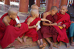 Young Monks Having Ice Cream At Shwezigon Pagoda