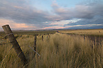 Idaho, South central, Twin Falls, Rogerson. A fence line and road converge in evening light on the last day of summer.