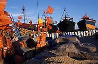 Afrique/Maghreb/Maroc/Essaouira : Le port de pêche - Chantier naval et filets de pêche
