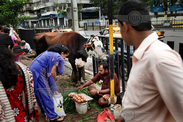 A woman buys vegetables from a street seller, with a cow tied nearby. Despite its rapid modernization and moves toward formalized retail, most Indians still buy produce outdoors..