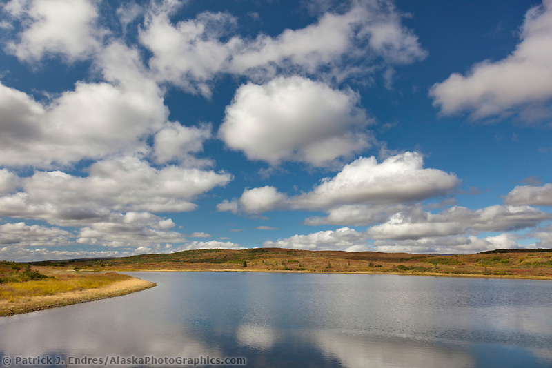 Clouds reflecting in a tundra pond, Denali National Park, Interior, Alaska.