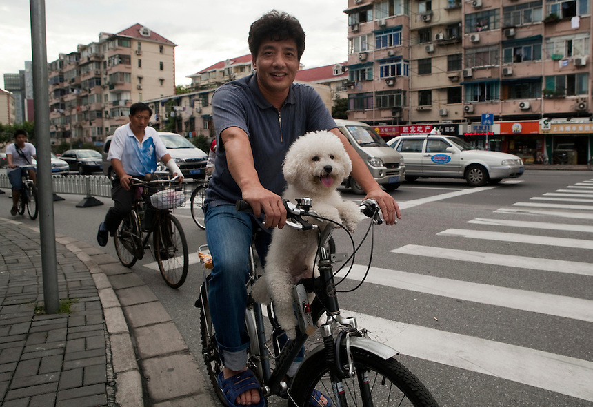 A man rides a bike with a fluffy white dog on the handlebars.