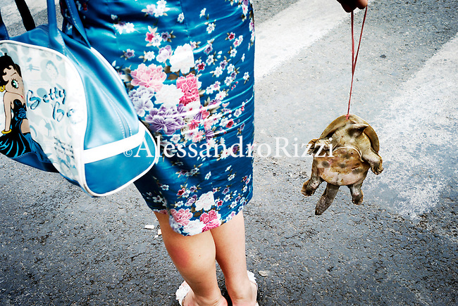 Woman holding hanging turtle