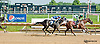 E Street Bourbon winning and at Delaware Park on 7/18/13