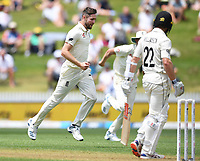 29th November 2019, Hamilton, New Zealand;  England's Chris Woakes celebrates the wicket of Williamson on day 1 of the 2nd international cricket test match between New Zealand and England at Seddon Park, Hamilton, New Zealand. Friday 29 November 2019