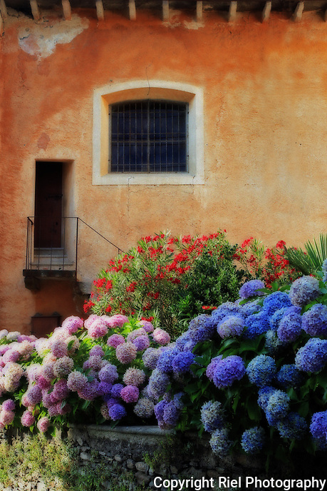 Hydrangeas in hues of purple, blue, pink and white line the garden of this classic Italian home of Orta San Giulio near Lago d'Orta (Lake Orta).