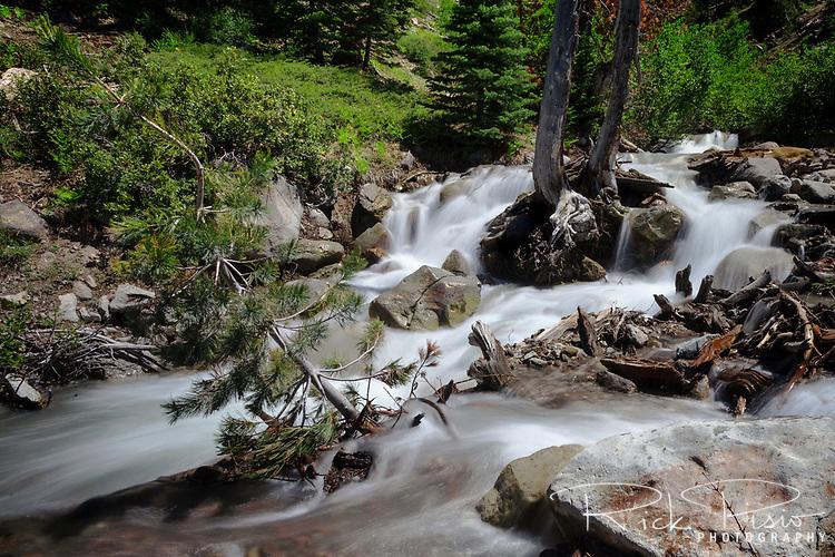 Bumpass Creek flows above Mill Creek Falls in Lassen Volcanic National Park