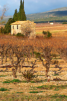 Chateau Villerambert-Julien near Caunes-Minervois. Minervois. Languedoc. A tool shed hut in the vineyard. Vines trained in Gobelet pruning. France. Europe. Vineyard.