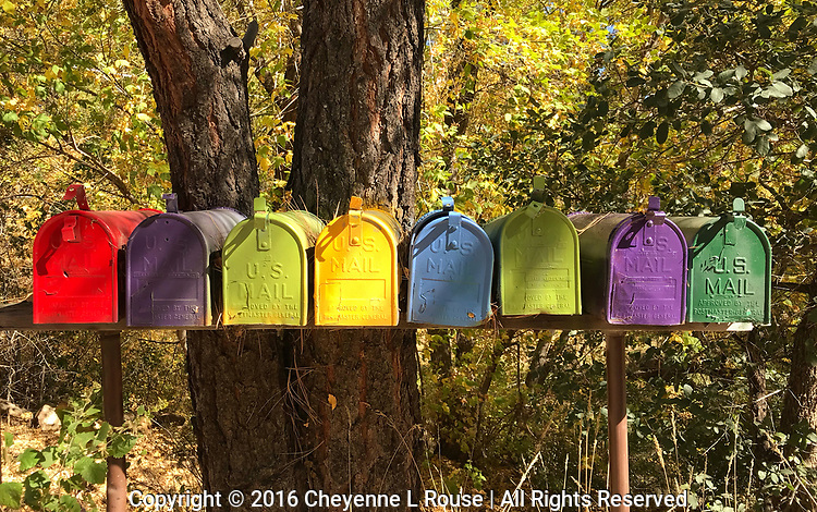 You've got Mail! - Colorful mailboxes - Arizona