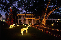 Christmas Lights & Holiday Decorations, Governors Mansion at Washington Place, Honolulu, Oahu, Hawaii, USA.