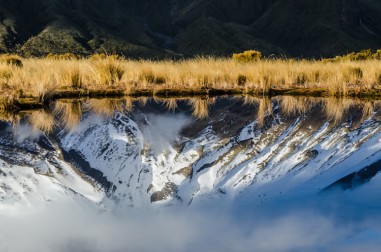 Mount Taranaki Egmont), Pouakai tarn reflection, New Zealand - stock photo, canvas, fine art print