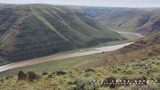 The rugged John Day River Canyon in the afternoon light of spring. Wind turbines are visible on the distant ridge.