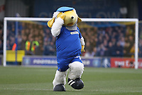 AFC Wimbledon mascot Haydon during AFC Wimbledon vs Millwall, Emirates FA Cup Football at the Cherry Red Records Stadium on 16th February 2019