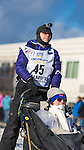 Jan Steves and her Iditarider at the ceremenial start of the 43rd Annual Iditarod in Anchorage, Alaska. Iditariders bid online for the privilege of riding with an Iditarod musher during the ceremonial start. Proceeds of the bidding go to charity.