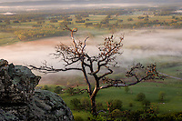 A foggy morning over the Akrnasas River Valley from the overlook at Petit Jean State Park in Arkanas.