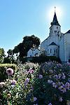 Les jardins du Presbytère à Sainte Gemmes sur Loire s'étagent en terrasses entre l'église et le bord de Loire.