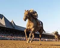 08-18-18 Alabama Stakes (I) Saratoga