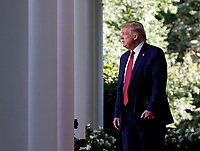United States President Donald J. Trump walks into the Rose Garden as he holds a press conference at the White House in Washington, DC on Tuesday, July 14, 2020. <br /> Credit: Tasos Katopodis / Pool via CNP/AdMedia