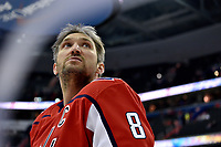 WASHINGTON, DC - APRIL 04: Washington Capitals left wing Alex Ovechkin (8) looks into the crowd during warm ups before the Montreal Canadiens vs. Washington Capitals NHL hockey game April 4, 2019 at Capital One Arena in Washington, D.C.. (Photo by Randy Litzinger/Icon Sportswire)