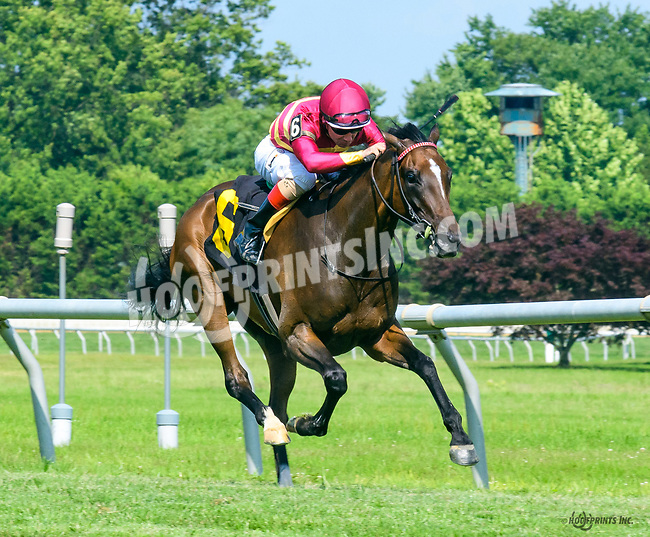 Private Client winning at Delaware Park on 7/10/17