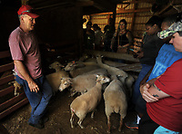 NWA Democrat-Gazette/ANDY SHUPE<br /> Ken Coffey (right), co-owner of a sheep and goat farm west of Prairie Grove, speaks Wednesday, June 14, 2017, about sheep to a group of veterans participating in the National Center for Appropriate Technology's Armed to Farm program during a tour of Coffey's farm.