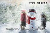 Isabella, CHRISTMAS CHILDREN, WEIHNACHTEN KINDER, NAVIDAD NIÑOS, paintings+++++,ITKE529285,#xk#