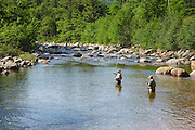 Fly fishing along the Swift River next to the Kancamagus Highway (route 112) which is one of New England's scenic byways. Located in the White Mountains, New Hampshire USA