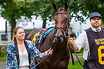 OCTOBER 8, 2018: Entirely the Matron Stakes at Belmont Park on October 8, 2018 in Elmont, NY.  Sue Kawczynski/ESW/CSM