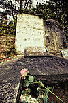 Single Rose on a Grave