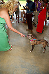 Sasha and Angela Struckmeier Wedding at Freedom Park.