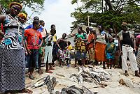 SIERRA LEONE, Tombo, fish market, food security and the livelyhood of small fishermen are affected by international big trawler fleet / SIERRA LEONE Fischerhafen Tombo, die Ernaehrungssicherung der Kuestenbewohner und die Existenz von Kuestenfischern ist durch Ueberfischung grosser Trawler Flotten bedroht