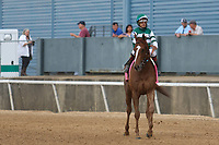 HOT SPRINGS, AR - April 14: Stellar Wind #3 with jockey Victor Espinoza aboard approach the winners' circle after winning the Apple Blossom Handicap at Oaklawn Park on April 14, 2017 in Hot Springs, AR. (Photo by Ciara Bowen/Eclipse Sportswire/Getty Images)