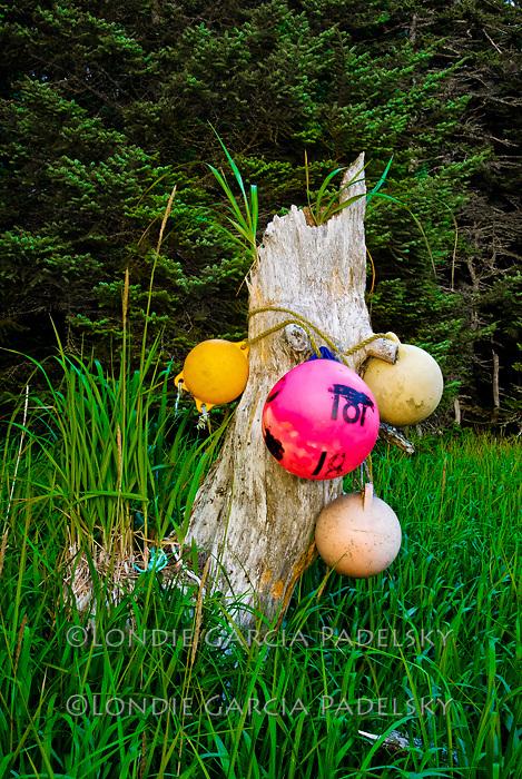 Floats used as cabin markers at Neketa Bay, Shuyak Island. Shuyak Island State Park, Alaska