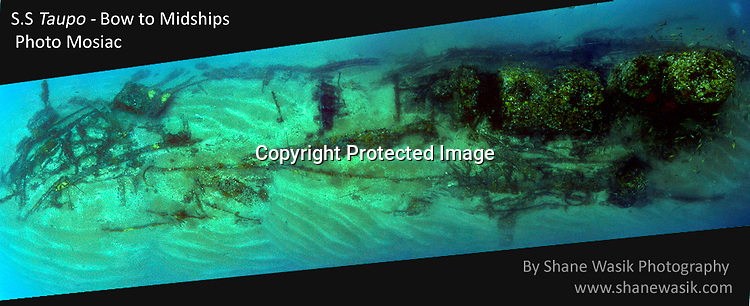 A montage of many images taken on the survey of the SS Taupo survey.