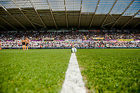 SWANSEA, WALES - APRIL 04: The gal on the centre spot prior to the Premier League match between Swansea City and Hull City at Liberty Stadium on April 04, 2015 in Swansea, Wales.  (photo by Athena Pictures)