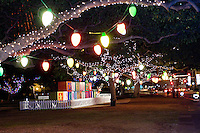 Annual Christmas lights and decorations at Honolulu Hale in downtown Honolulu attract locals and tourists alike, O'ahu.