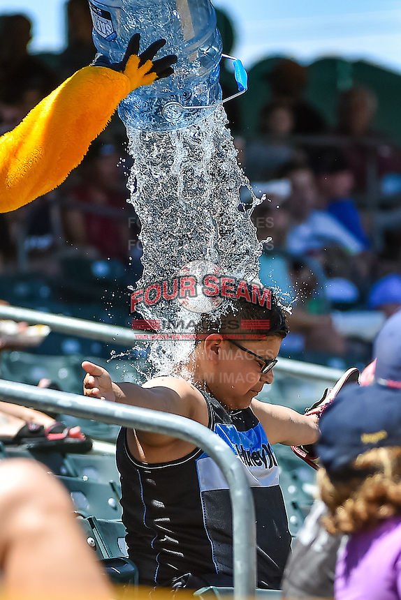 A fan gets drenched by Bumble to quench the heat as the Salt Lake Bees played the Fresno Grizzlies in Pacific Coast League action at Smith's Ballpark on June 14, 2015 in Salt Lake City, Utah.  (Stephen Smith/Four Seam Images)