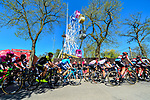 Riders climb the brutal Mur de Huy during La Fleche Wallonne 2018 running 198.5km from Seraing to Huy, Belgium. 18/04/2018.<br /> Picture: ASO/Gautier Demouveaux | Cyclefile <br /> <br /> All photos usage must carry mandatory copyright credit (&copy; Cyclefile | ASO/Gautier Demouveaux)